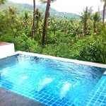 The highlight... our private pool with tropical view.
