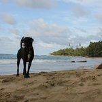 Bassam on the beach
