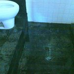 bathroom floor; drain is under the toilet