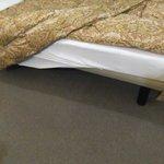 ベッドの下はものが置けるタイプ