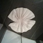 Decoración de la alfombra de ducha