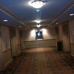 Elevator Lobby on Floors