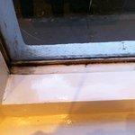 Mouldy window