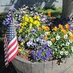 Summer flower barrels