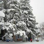 Winter view of the Studio