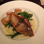Snapper with scallops over lemon-thyme risotto