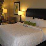 King Bed -- Hilton Garden Inn, Cary, NC