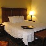 King Bed -- Hampton Inn, Lincolnton, NC