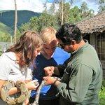 Feeding the snakes