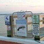 Pier/dock