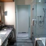 Shower and separate toilet with divider door.