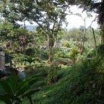 De tuinen van Spa Hotel Los Lagos
