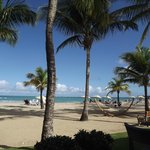 View of beach from breakfast buffet