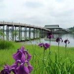 Tsurunomai Bridge