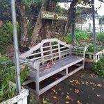 Garden seat at Mystery Mountain Farmstay Resort
