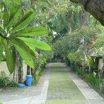 Seminyak Village Resort grounds