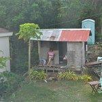 Neighbour at Tanawin