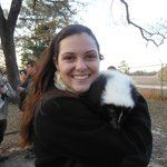 Buttercup the skunk