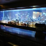 Aquarium - Front Desk on one side, hotel bar on the other