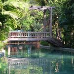 la piscine estbtrés originale dans un somptueux décor à la Indiana Jones !