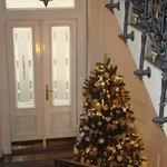 meraviglioso albero di Natale!