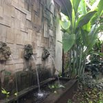 Great Balinese design.