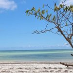 spiaggia di uroa