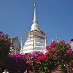 Nice Chedi behind the Temple