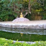 Buddha in Garden behind Temple