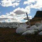 Campo di battaglia di Isandlwana