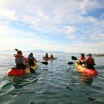 kayaking on walkerbay