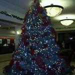ホテルロビー クリスマス時期のため、ツリーが飾られていた