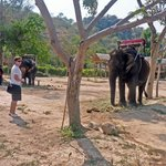 Hua-Hin safari and adventure park