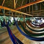 the hammock room
