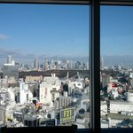 "View of ""downtown"" Tokyo from the Japanese style restaurant 25th FL"