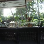 Nescafe Outlet