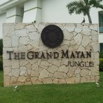 The Grand Mayan Jungle