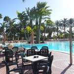 Riu Flamingo pool view