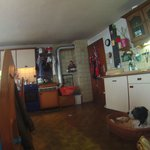 Cute dogs and kitchen/dining room