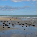 Palmer Beach