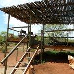 Wildlife spotting centre