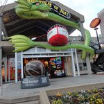 Ripley's Believe It or Not Baltimore Inner Harbor