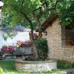 Photo of Casa Scheda