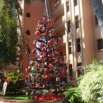 Christmas tree on grounds