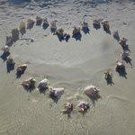 un regalo en la playa para 15 años de amor