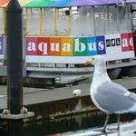 Aquabus Ferry @ Granville Island