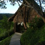 Gaia house (thatched roof is functional not decoration)