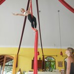 you can learn the silks:)