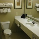 Gleaming bathroom