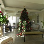 Solarium with Christmas decorations: great place to read